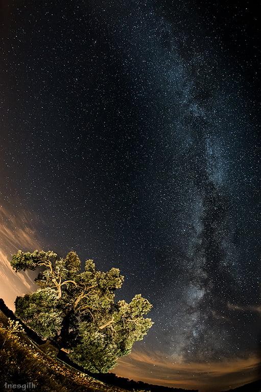 Tutorial Fotografía Nocturna