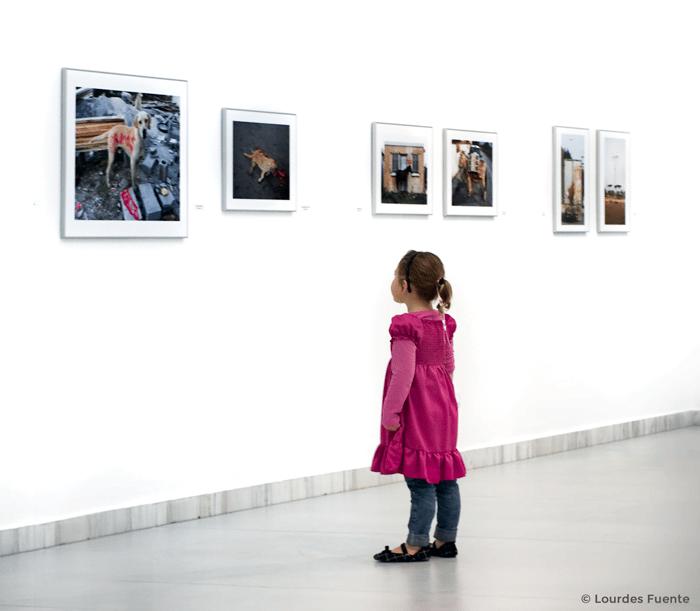 15 Frases de fotografía llenas de inspiración