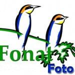 1º Concurso Internacional de Fotografía de Naturaleza Fonat-Foto 2017