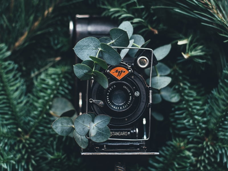 Los mejores concursos de fotografía de febrero 2018