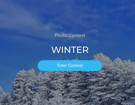 "Coinaphoto Photo Contest ""Winter"""
