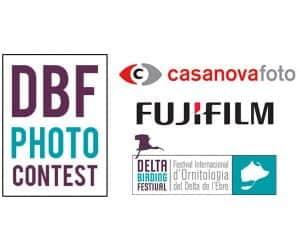 DBF Photo Contest 2019