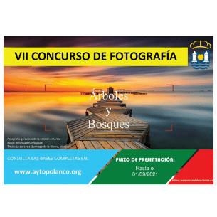 VII Concurso de Fotografía de Polanco 2021