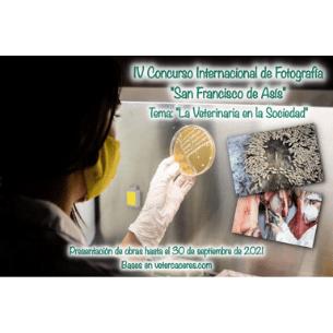 IV Concurso Internacional de Fotografía del Colegio de Veterinarios de Cáceres